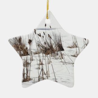 Bulrushes in frozen lake ceramic star decoration