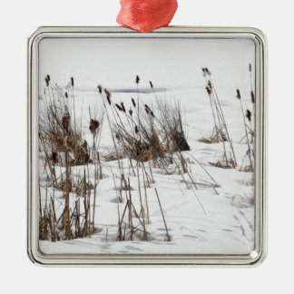 Bulrushes in frozen lake christmas ornament