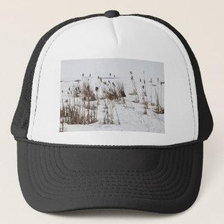 Bulrushes in frozen lake trucker hat