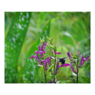 Bumble Bee and Pink Flowers Poster