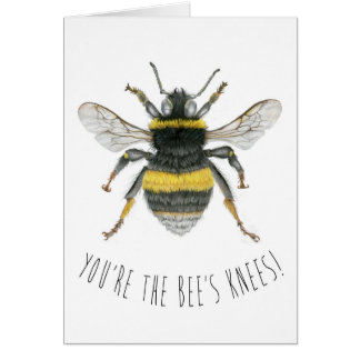Bumble Bee Greetings Card - You're the Bee's Knees