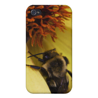 Bumble Bee iPhone4 Case Covers For iPhone 4