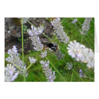 'Bumble Bee' Notecard