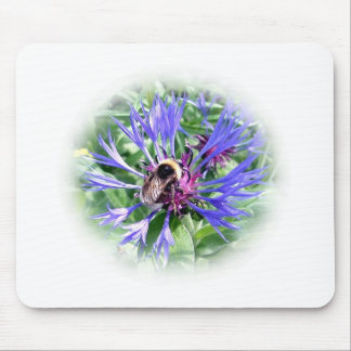 Bumble Bee on Knapweed Mouse Mats