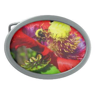 Bumble Bee on Poppy Oval Belt Buckles