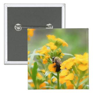 Bumble Bee On Siberian Wallflower Button
