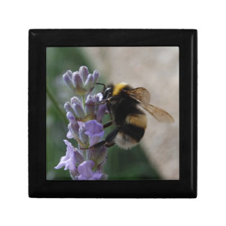 Bumble Bee On Valender Gift Box