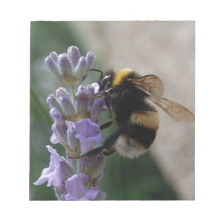 Bumble Bee On Valender Notepad