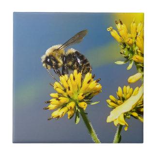 Bumble Bee on Yellow Wildflower Ceramic Photo Tile