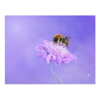 Bumble Bee Perched on a Purple Flower Postcard