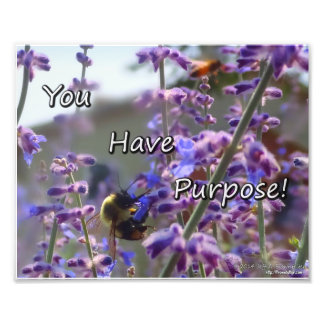 Bumble Bee Photo- You Have Purpose