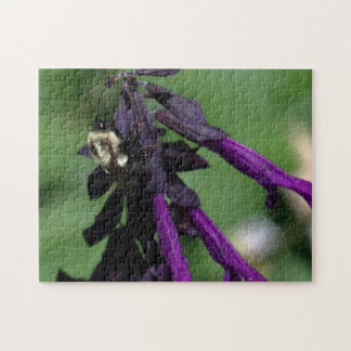 Bumble Bee, Puzzle. Jigsaw Puzzle