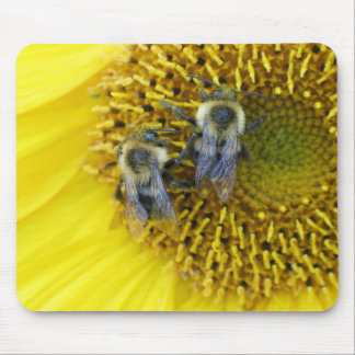 Bumble Bees Sunflower Mouse Pad