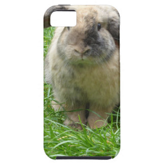 Bumble Rabbit Case For The iPhone 5