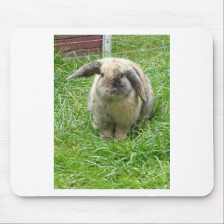 Bumble Rabbit Mouse Pad