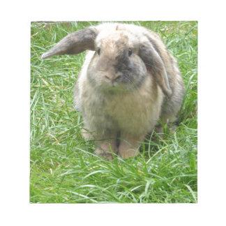 Bumble Rabbit Notepad
