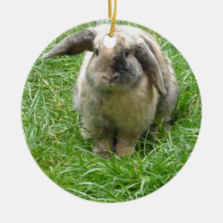 Bumble Rabbit Round Ceramic Decoration