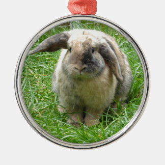 Bumble Rabbit Silver-Colored Round Decoration