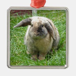 Bumble Rabbit Silver-Colored Square Decoration