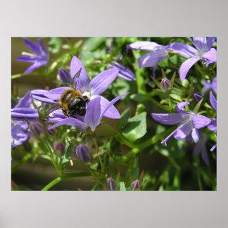 Bumblebee 1 posters