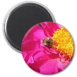 Bumblebee and Peony 6 Cm Round Magnet