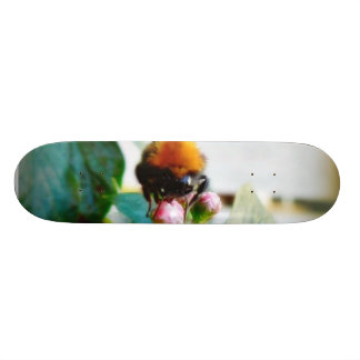 Bumblebee Insect Skate Decks
