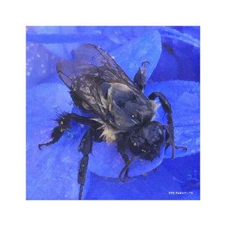 BUMBLEBEE ON A BLUE HYDRANGEA ON A DEWY MORN PRINT