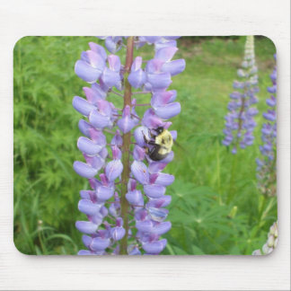 Bumblebee on a Lupine Flower Mouse Mat