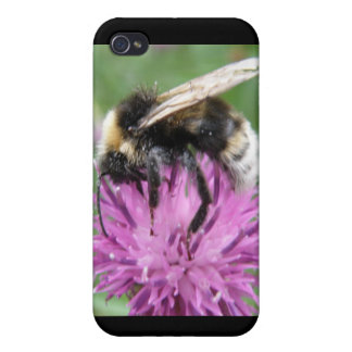 Bumblebee on a Thistle  iPhone 4 Cover