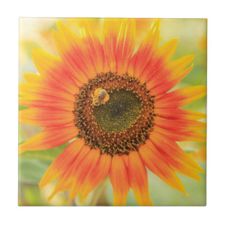 Bumblebee on sunflower, Community Garden Tile