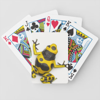 Bumblebee Poison Dart Frog Bicycle Playing Cards
