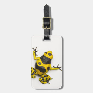 Bumblebee Poison Dart Frog Luggage Tag