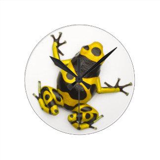 Bumblebee Poison Dart Frog Round Clock
