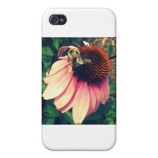 Bumblebees iPhone 4 Case