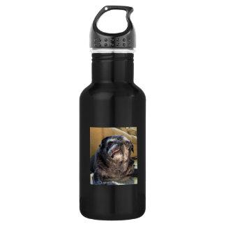 Bumblesnot 532 Ml Water Bottle