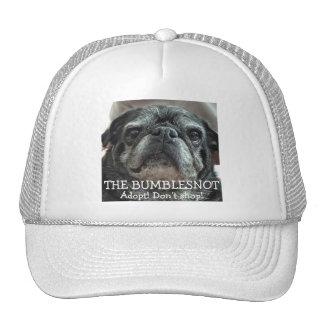 Bumblesnot Hat: Adopt! Don't shop! Cap