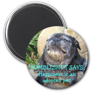 Bumblesnot magnet: Happiness is an Adopted Pet! 6 Cm Round Magnet