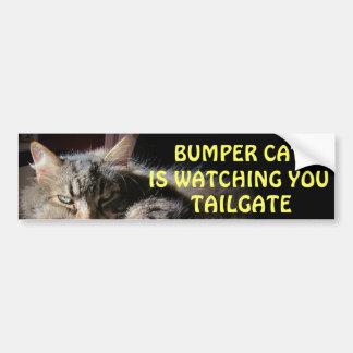 Bumper Cat is watching TAILGATE 15 Bumper Sticker