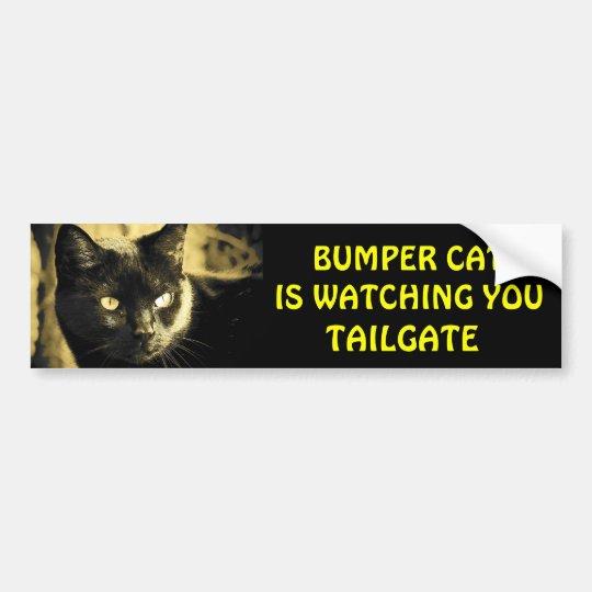 Bumper Cat is watching TAILGATE 16 Bumper Sticker