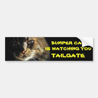 Bumper Cat is watching TAILGATE 23 Bumper Sticker