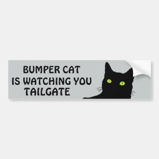 Bumper Cat is watching TAILGATE 29 Car Bumper Sticker