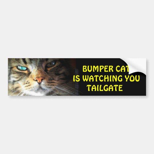 Bumper Cat is watching TAILGATE 2 Bumper Sticker
