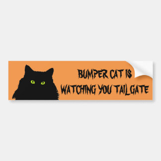 Bumper Cat is watching TAILGATE Black and Orange Bumper Sticker