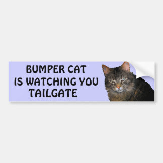 Bumper Cat is watching You TAILGATE 10 Bumper Sticker