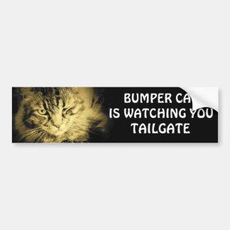 Bumper Cat is watching You TAILGATE 17 Bumper Sticker