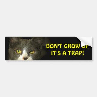 Bumper Cat Says Don't Grow Up Meme Bumper Sticker