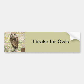 Bumper Sticker, Brake for Owls, Burrowing Owl Bumper Sticker