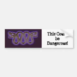 Bumper Sticker - This Could be Dangerous!!