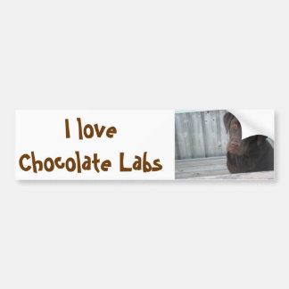 Bumper Stickers - I Love Chocolate Labs