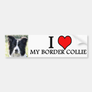 bumpersticker border collie bumper sticker